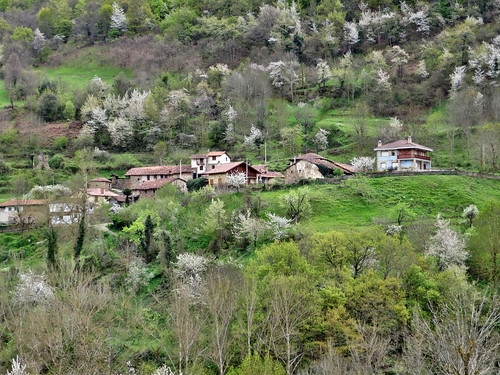 Avellanedo (Cantabria)