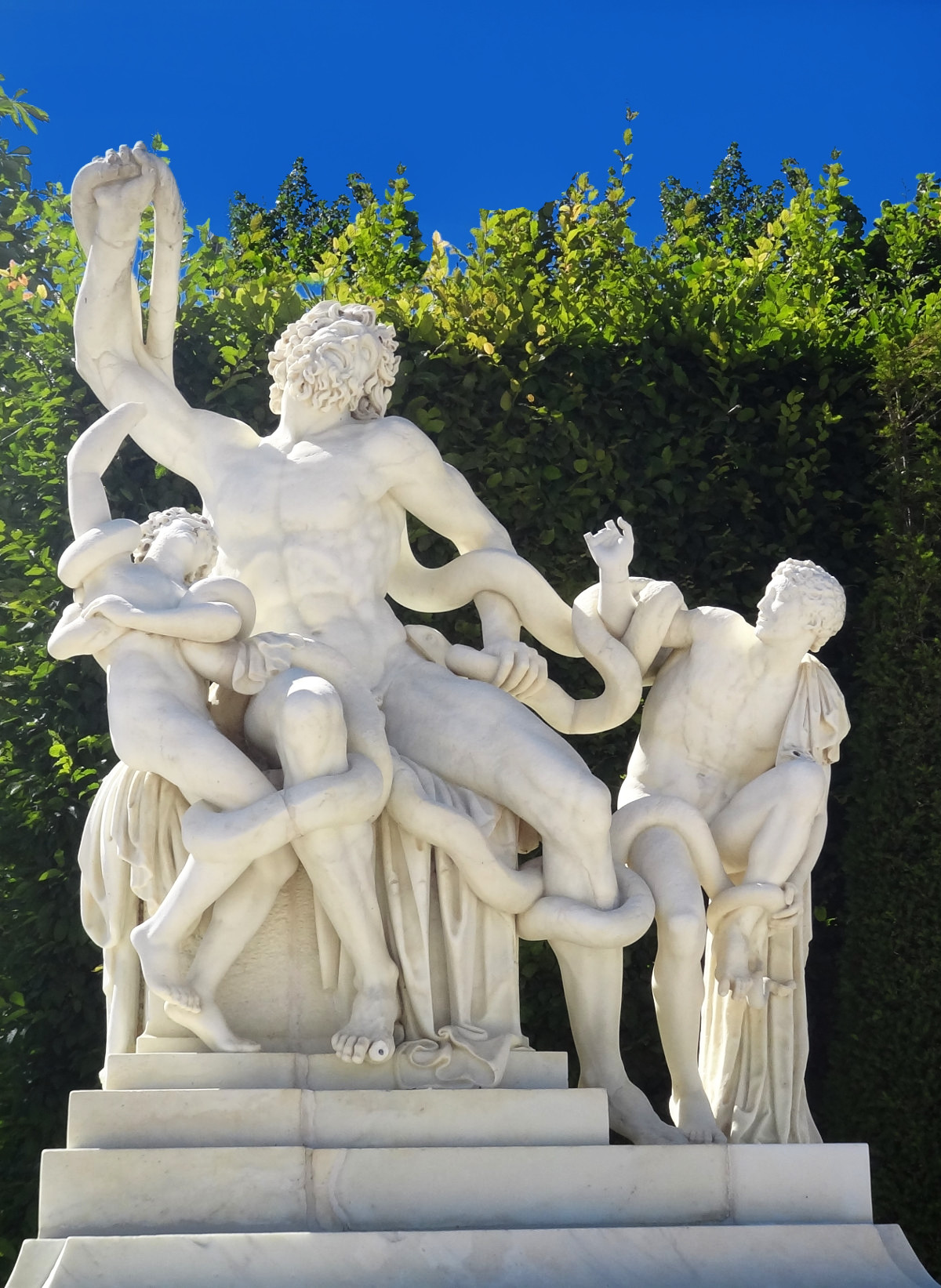 Laocoön and his sons (1696). Credit Adesio2010