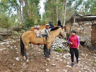 Horse Ranch Above Cusco