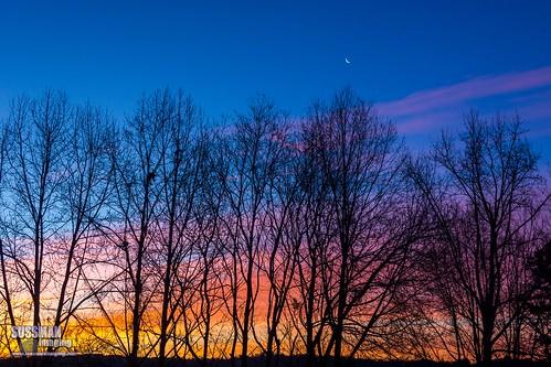 trees sky nature silhouette clouds sunrise georgia gainesville hallcounty thesussman sonyslta77 sussmanimaging