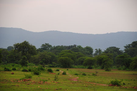 Lupungutu Sorrounding hills