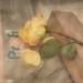 Narrenturm - 1 found yellow rose at the Building Site, Fool`s Tower - someone here seems to be jealous - Fund: 1 gelbe Rose, von einem Eifersuchts-Profi - 11. 10. 2014