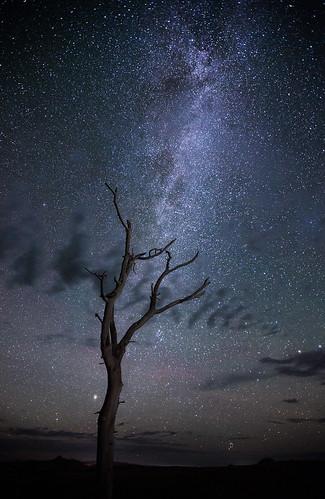 nightphotography lightpainting landscape desert mongolia galaxy astronomy glowing dim universe paesaggio solarsystem milkyway galileogalilei travelphotography vialactea nakedeye bayangobi virgosupercluster vialattea canon6d ef1635f28lii nonaceos diskshaped provinciadibulgan laniakeasupercluster