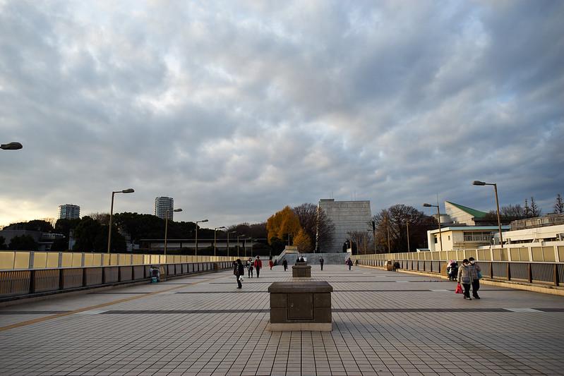 Tokyo Ueno - A7II - Distagon25