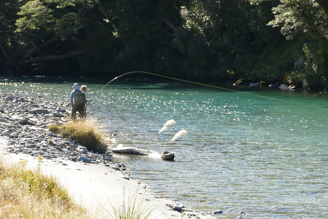 fly fishing the south island