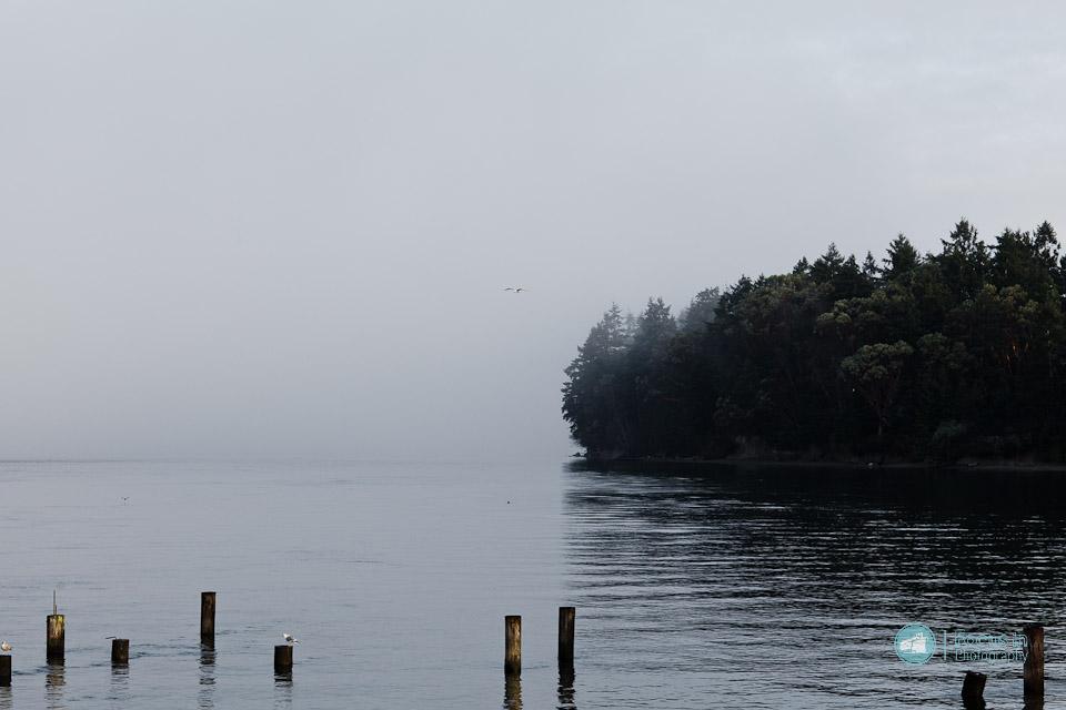 Seattle_CSA (3 of 6)
