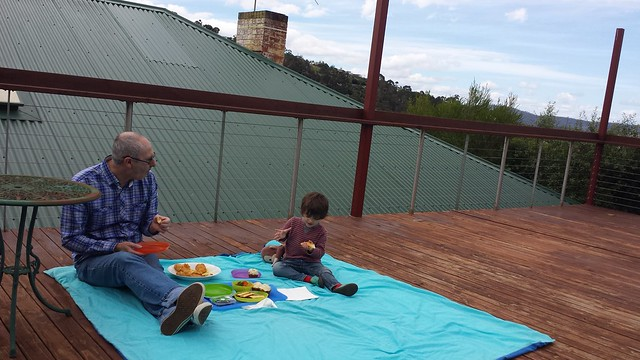 Australia Day picnic on the deck