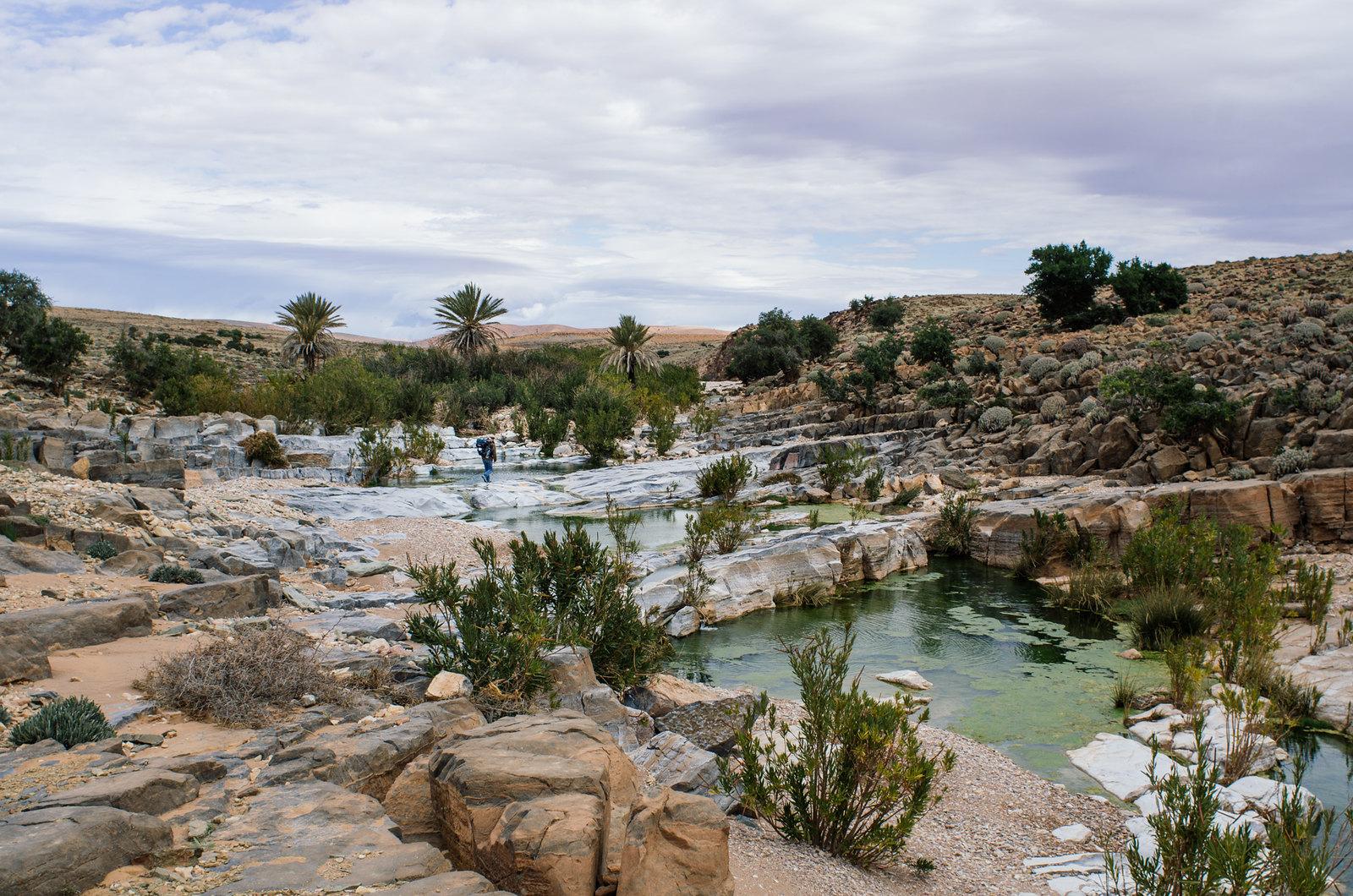 Trek sans guide au Maroc - 5 jours dans l'anti-Atlas - Dernière oasis avant le plateau