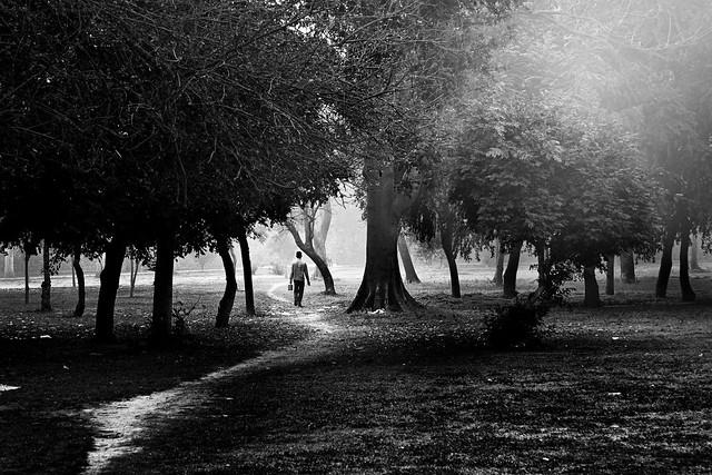 Place I Humayun's Tomb, New Delhi - Flickr Best Photos