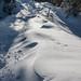 Schneeverwehungen auf dem Forstweg auf dem Weg zum Pendlinghaus