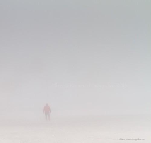 Niebla en los huesos