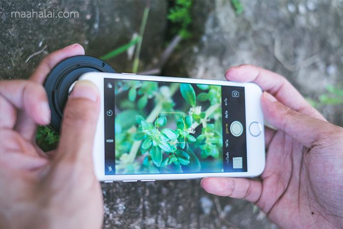 Fujian on iPhone