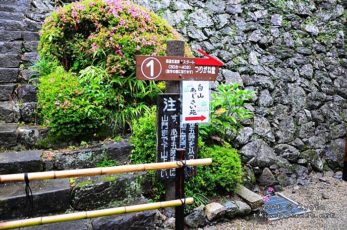2016善峰寺5.JPG