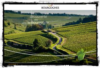"""""""A la découverte des vins de Bourgogne"""""""