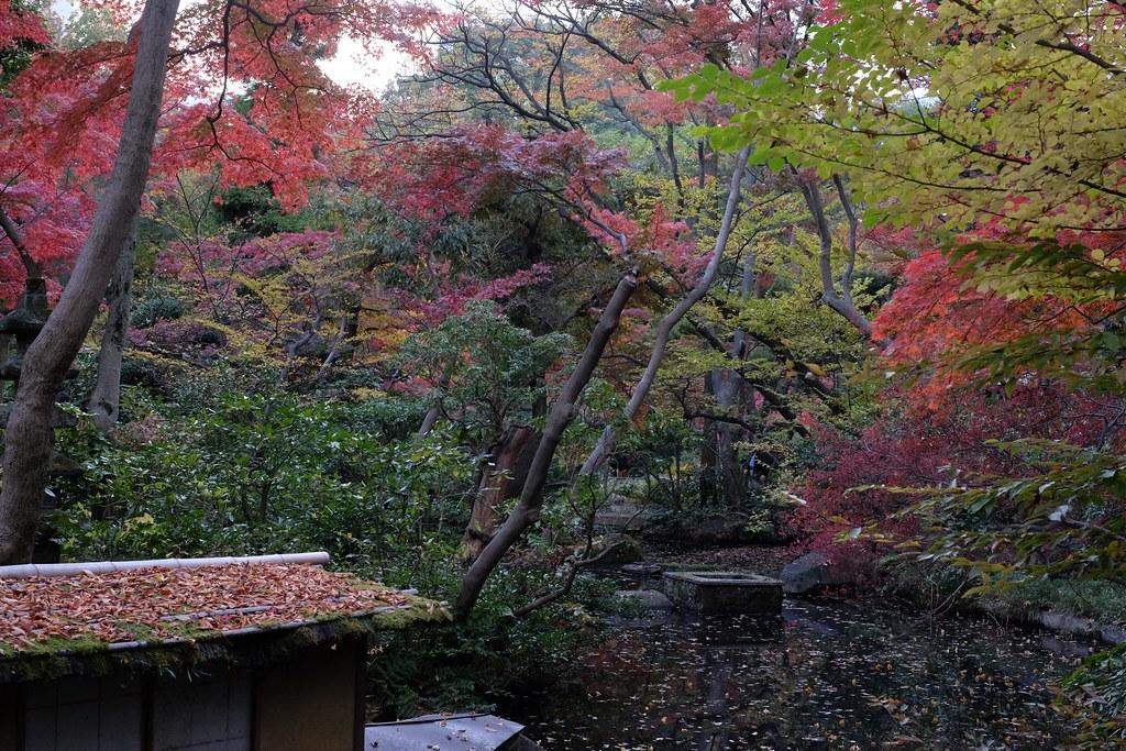 Nezu Museum in Minami-aoyama