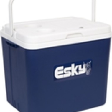 Esky 33L Hard Chilla Cooler $32 50 Was $54 95 @ Bunnings
