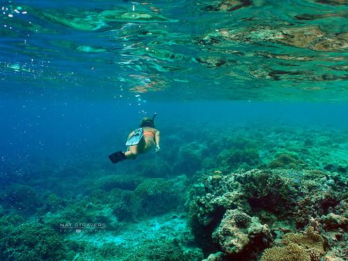 indonesia landscape olympus resort wakatobi omd wangiwangi patuno natstravers southeastsulawesi