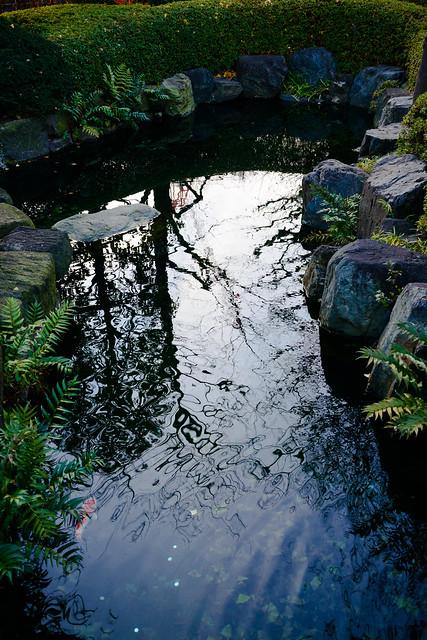 年末光陰 - Garden