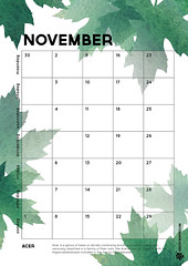 11_kalender 2015