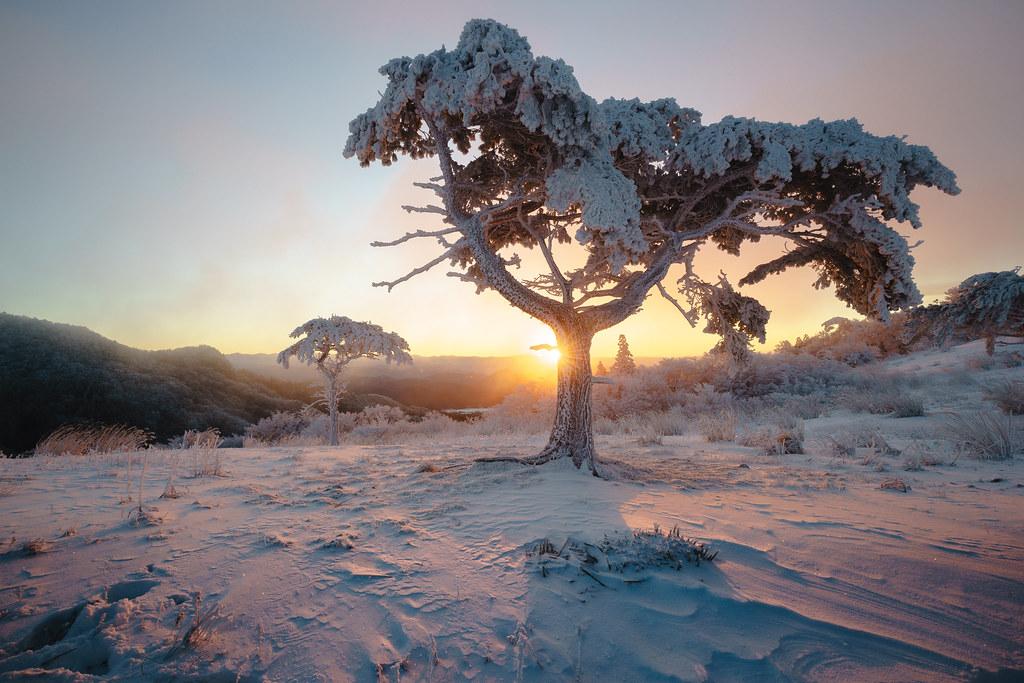 赤く染まる雪原 | Sony a7 + AF-S NIKKOR 16-35mm f/4G ED VR