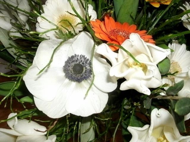 Tulpen, Anemonen, Gerbera