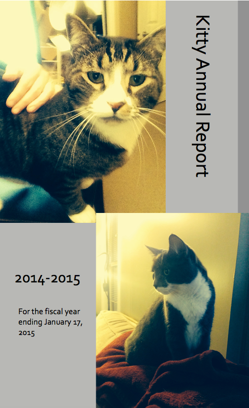 Kitty Annual Report 01