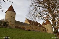 58 Arthel - la Motte Château XIV XV XVII XVIII - Photo of Chevannes-Changy