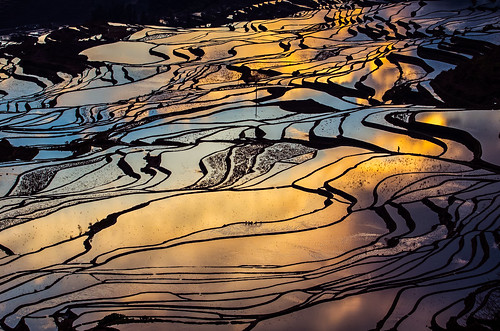 china sunrise yunnan 中國 yuanyang 日出 雲南 元陽 yuanyangcounty 多依樹梯田 元陽縣 duoyishuterracedfield