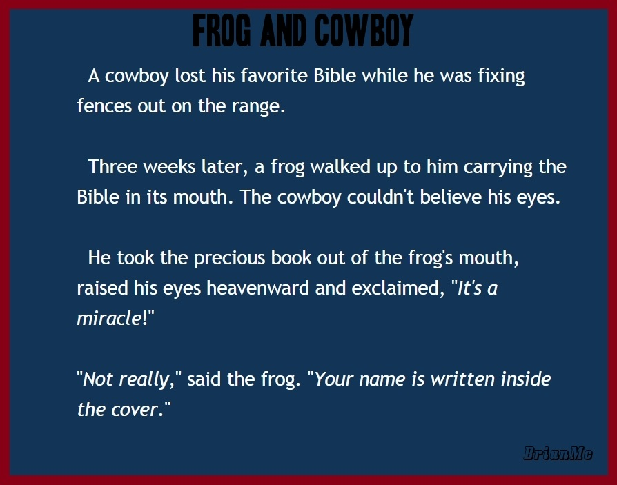 A Frog And A Cowboy