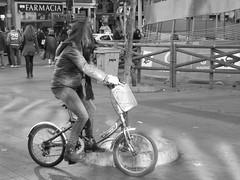 Bicicleta, Montera (2)