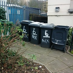 Happened upon the refuse collection of the beast while out walking. He's very tidy.