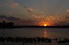 Sunset Rays 5