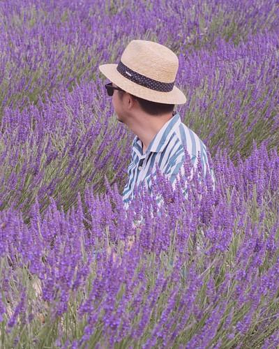 Changement de profil #fr #france #vsco #vscocam #vscogram #vscophile #vscoparis #vscofrance #igersparis #igersfrance #olympus #em10 #vscolympus #latergram #perspective #picoftheday #photooftheday #provence #vercoiran #lavande #lavender #purple #violet #pr