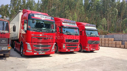 TSB Team - Volvo FH