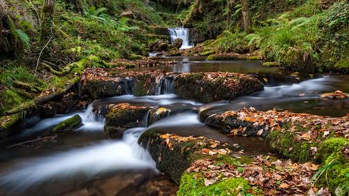 Aguas de otoño