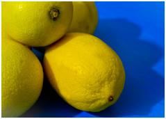 citrus, lemon, yellow, yuzu, produce, fruit, food, tangelo, sweet lemon, bitter orange, citron,