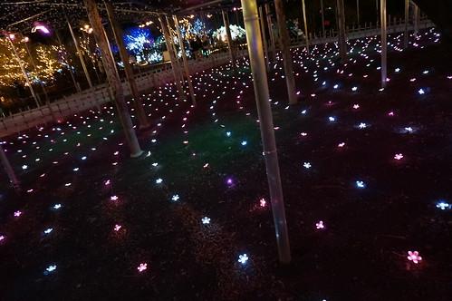 Flower Fantasy 2015 illumination at Ashikaga Flower Park 23