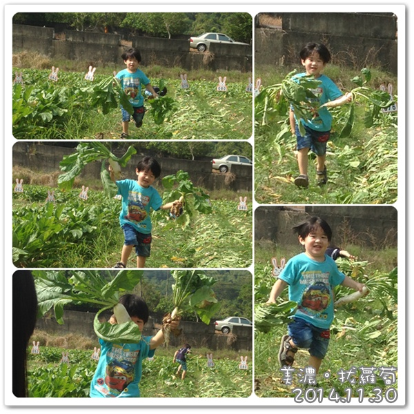 141130-飛奔送蘿蔔