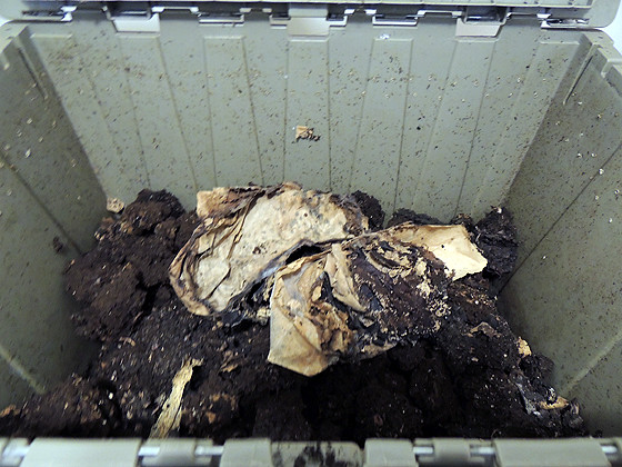 worm-composting-25