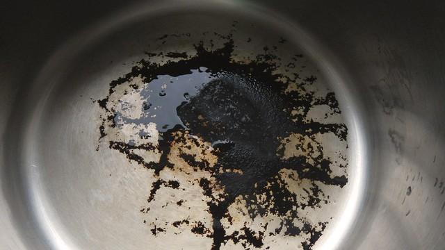 Scrubby Pot 1