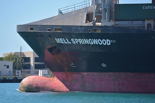 MELL Springwood bow