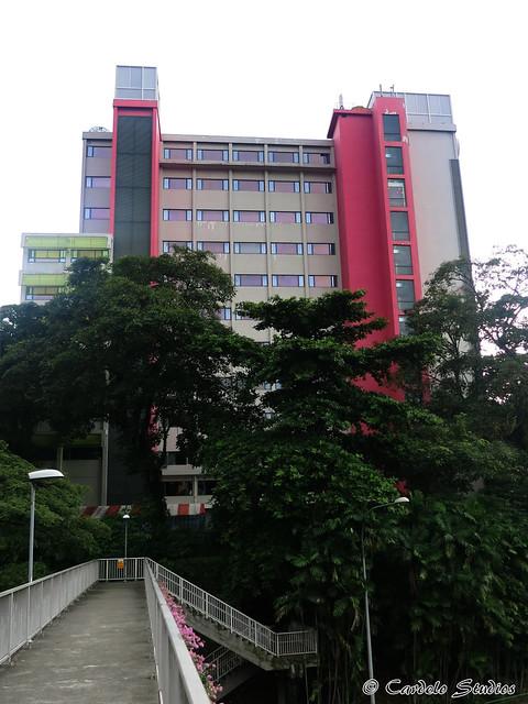 Pearl's Hill School 01
