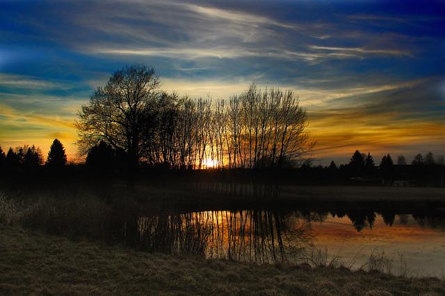 Kakaoteiche Sunset Baumensamble