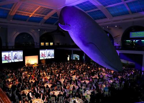 RANDALL's ISLAND PARK ALLIANCE'S 2015 Fielding Dreams Gala Dinner.-mosphere