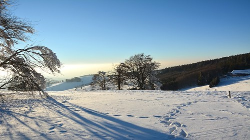 February - still winter