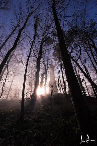 forest sunrise canon landscape geotagged deutschland nebel foggy landschaft wald sonnenaufgang trier rheinlandpfalz mariensäule 14mm markusberg ultraweitwinkel ef14mmf28ii mariensäuletrier