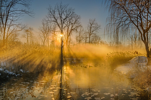 winter sun water weather fog sunrise reflections landscape nikon shadows wideangle wintersunrise morningsun waterreflections landscapephotography foggysunrise absolutemichigan southeastmichigan puremichigan sunlightthroughfog