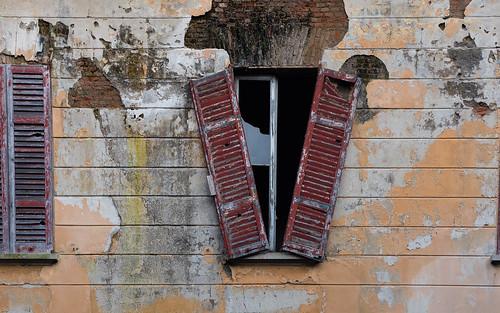 Asylum Window