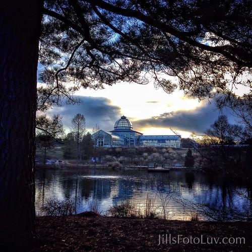 trees sunset sky lake water clouds virginia scenic arboretum richmond greenhouse rva lewisginterbotanicalgarden