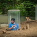 people zoo for ground hogs by tibchris
